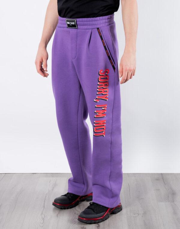 спортивки фиолет 3