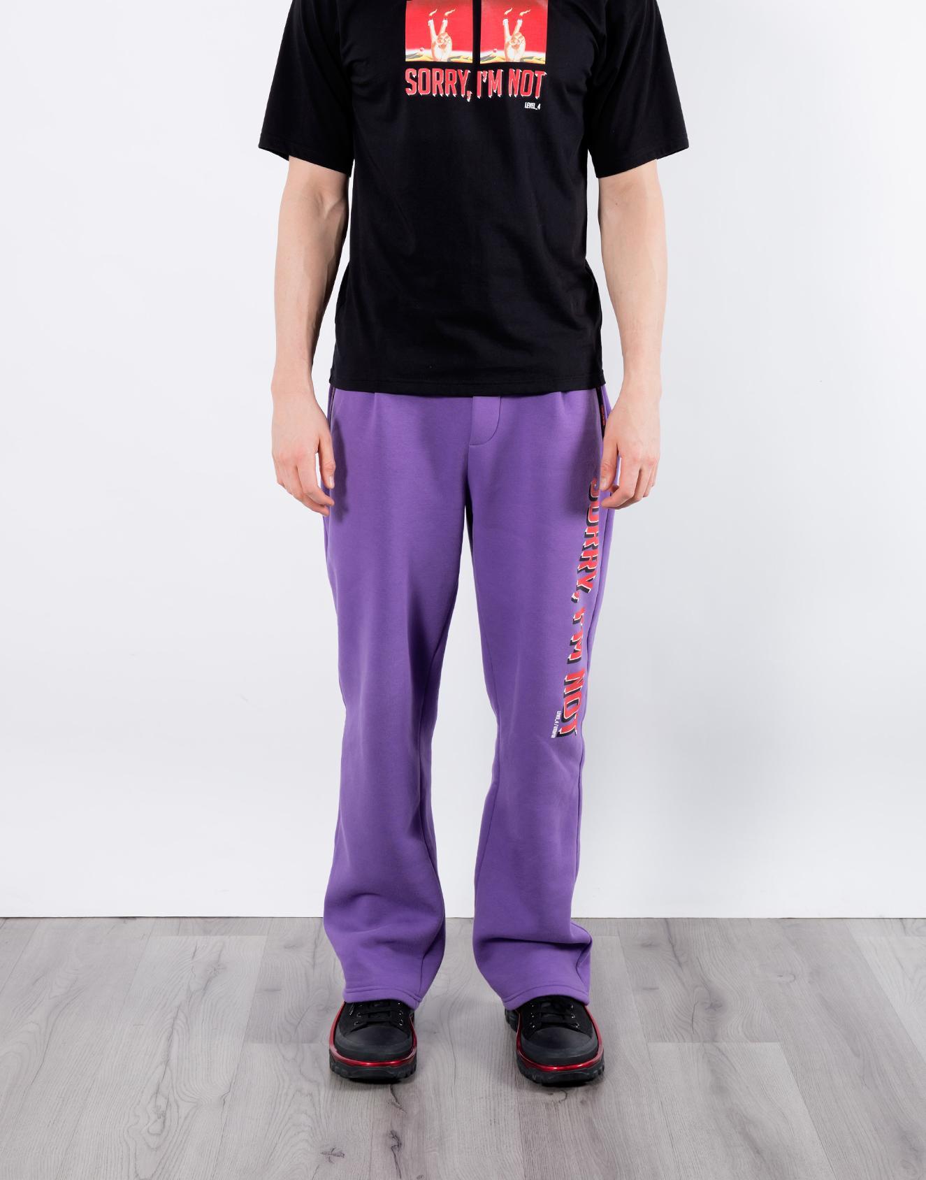 спортивки фиолет